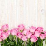 Odhaľte význam kvetov: Čo prezradí kytica ruží?