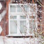 Zásady výberu okná pre vašu domácnosť