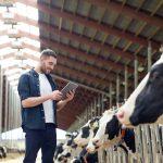 Minifarmy a ranče na Slovensku